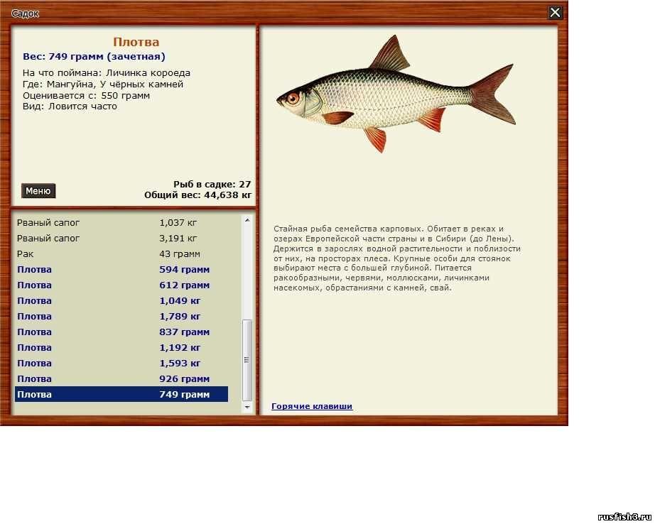 купить червей для рыбалки васильевский остров