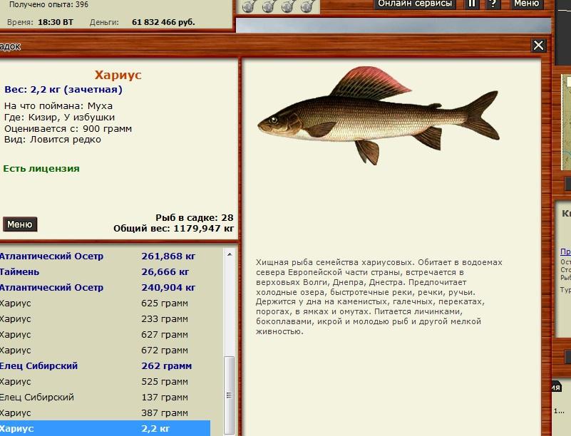 в каких местах лучше всего ловить рыбу