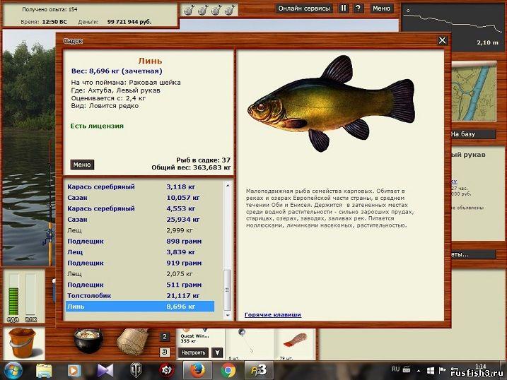 на кого лучше ловить рыбу