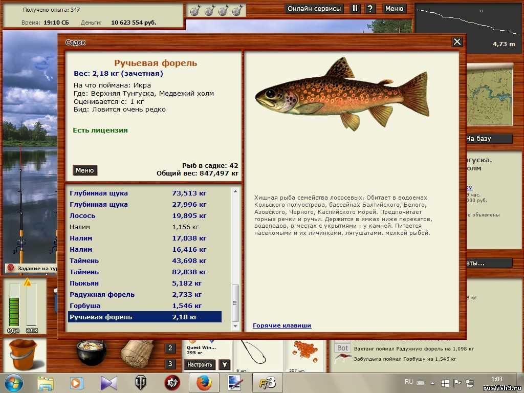 на что клюет лосось в рр3