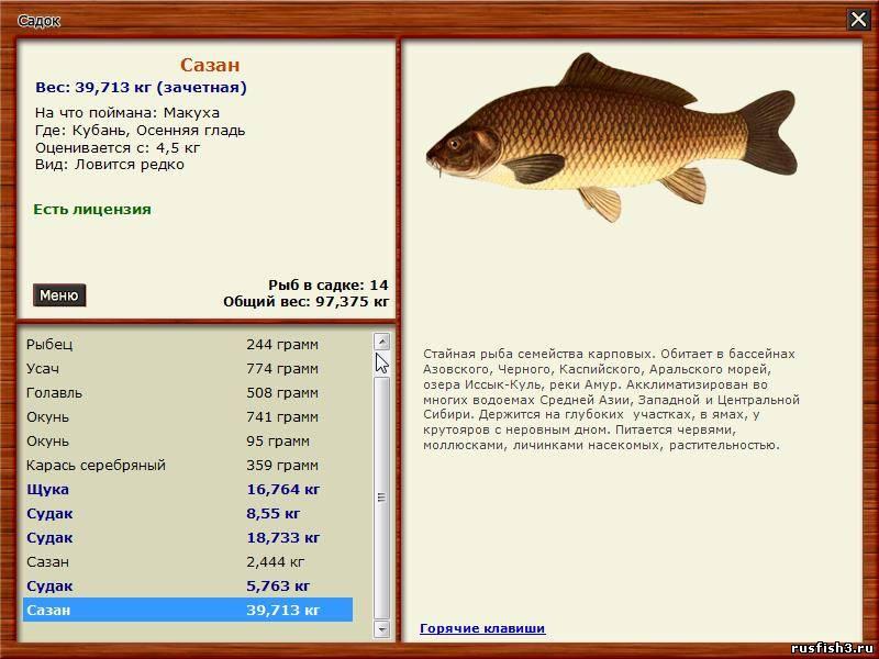 черное море.триада.русская рыбалка