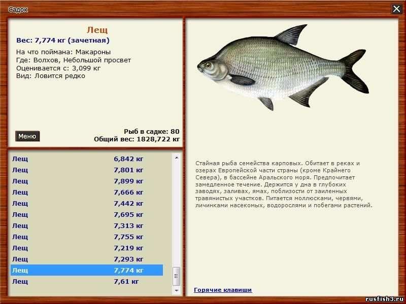 сезон рыбной ловли сканворд